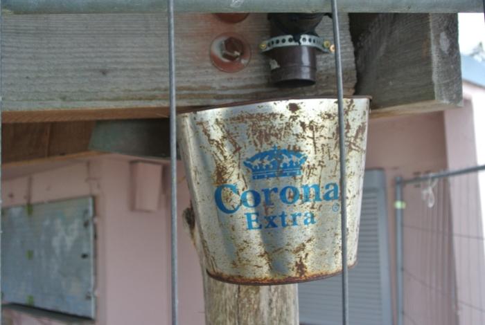 6. Corona