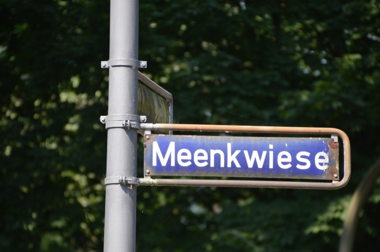 Meenkwiese 01
