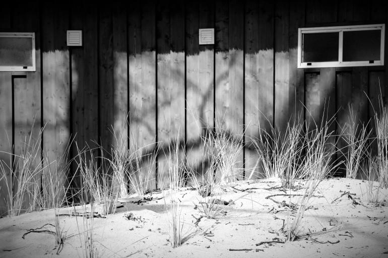 Licht und Schatten 05