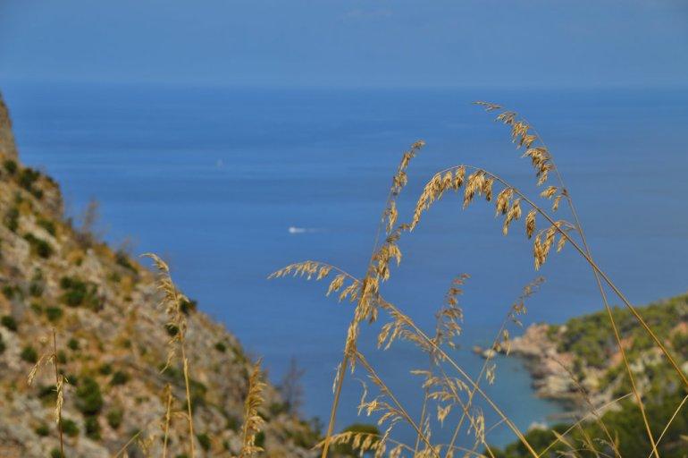 Ahoi Mallorca 11