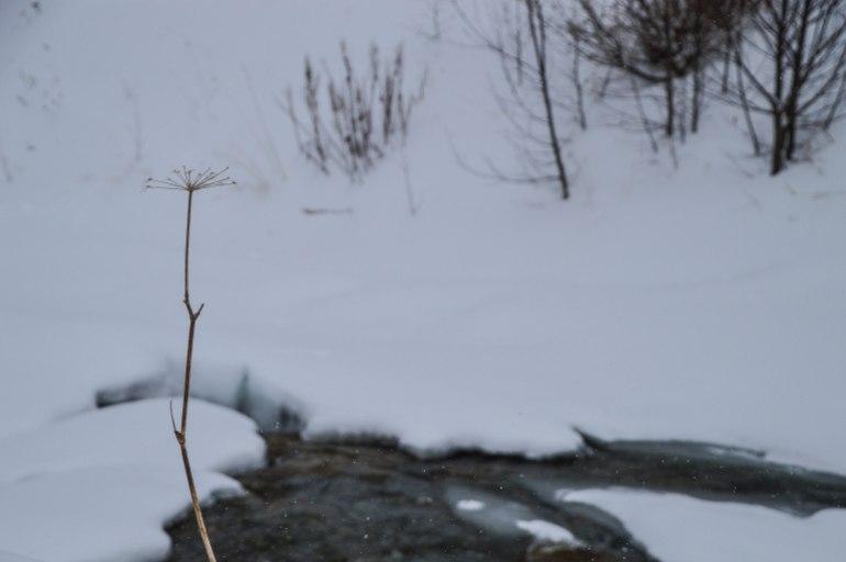 ein-wintermaerchen-08